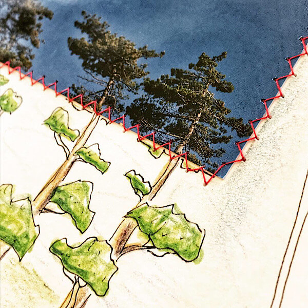 100 Tage Projekt, Natur im Quadrat, Bild Nr. 28