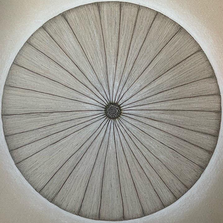 Diatom II, Kieselalge, Zeichnung, Details