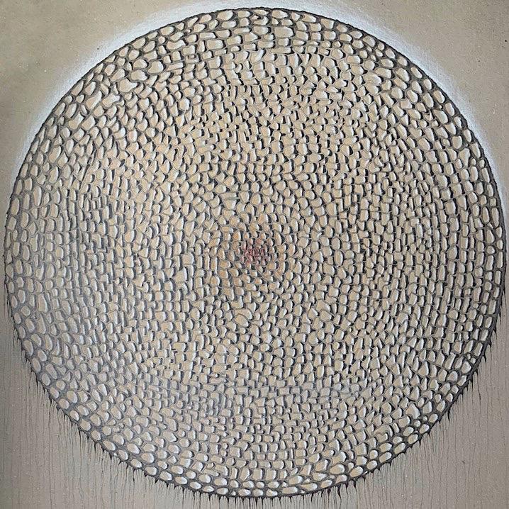 Zeichnung, Diatom I, Kieselalge
