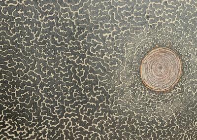 Diatom 3, Kieselalge, Zeichnung, Freihandzeichnung, Mixed Media, Europaletten, Karton, Details