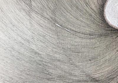 Diatom 7, Kieselalge, Zeichnung, Freihandzeichnung, Mixed Media, Europaletten, Karton, Details