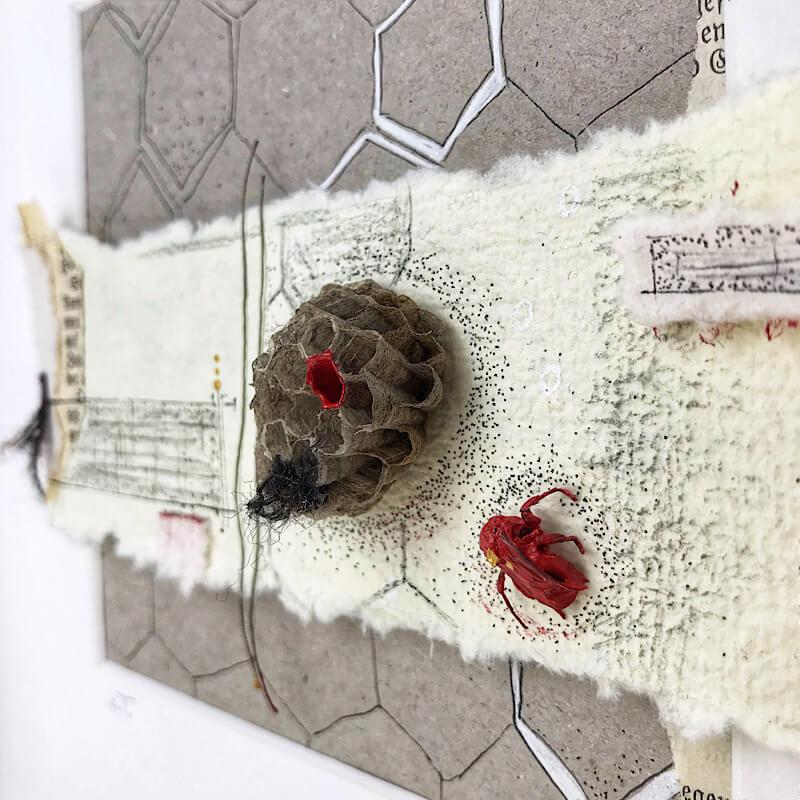 Ohne Titel oder ohne Worte? Waben von Wespen, Biene, Papier, Wollfäden, Papiere, Gesangbuch, Pigmentliner, Acrylfarbe, Detail